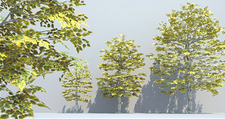 DOSCH 3D: Trees & Conifers for Maxwell Render sample-image